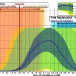 Prisotnost ovulacije je osnovni pogoj za žensko plodnost